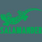 32-саламандр(2)